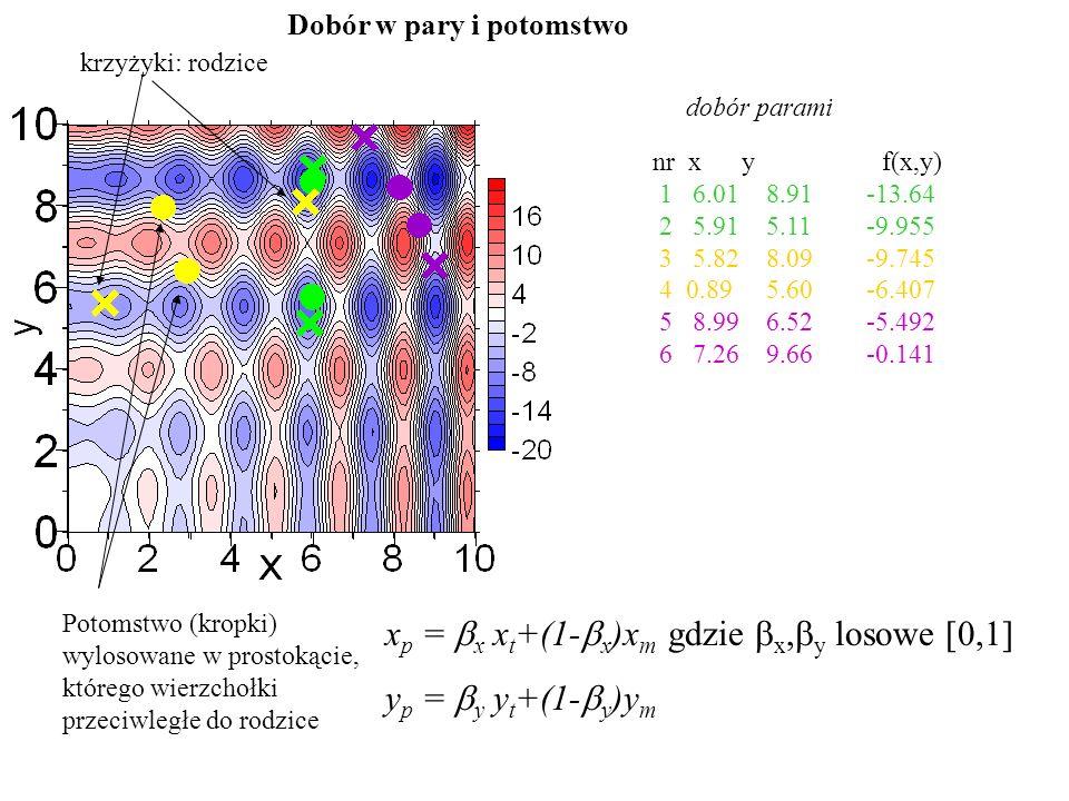xp = bx xt+(1-bx)xm gdzie bx,by losowe [0,1] yp = by yt+(1-by)ym